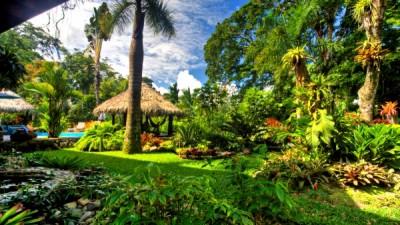 Banana Azul Hotel Costa Rica