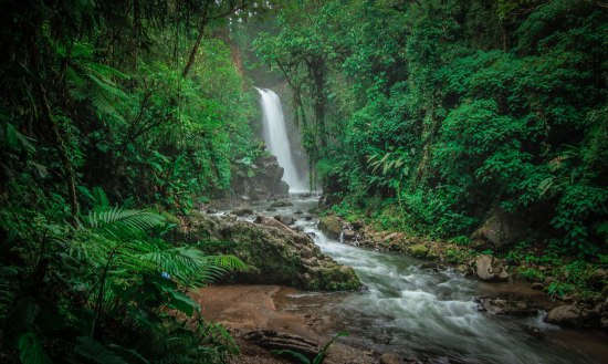 La Paz Waterfall Gardens Review