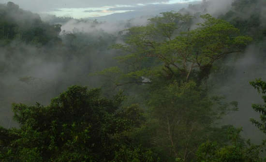 9 Best Costa Rica National Parks & Reserves