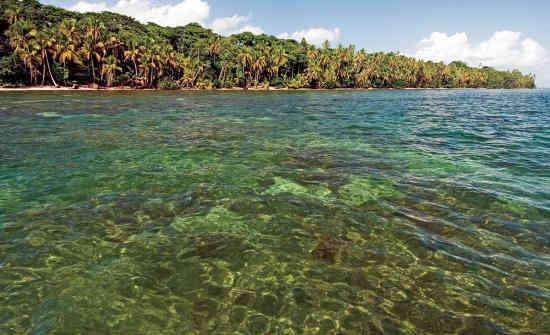 Cahuita National Park Snorkeling