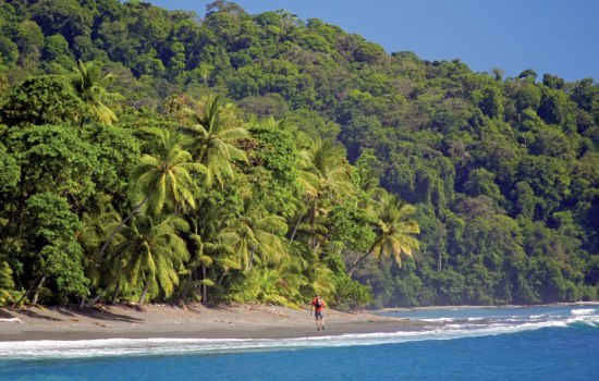 Explore the South Pacific Coast of Costa Rica