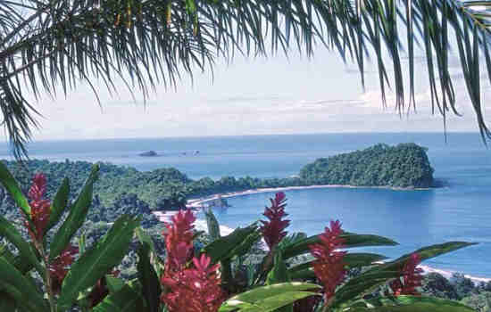 Things to Do in Manuel Antonio National Park & Quepos, Costa Rica