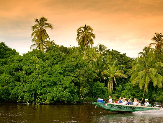 Things To Do In Tortuguero National Park