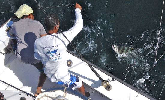 Best Sport Fishing Trips & Marinas in Costa Rica