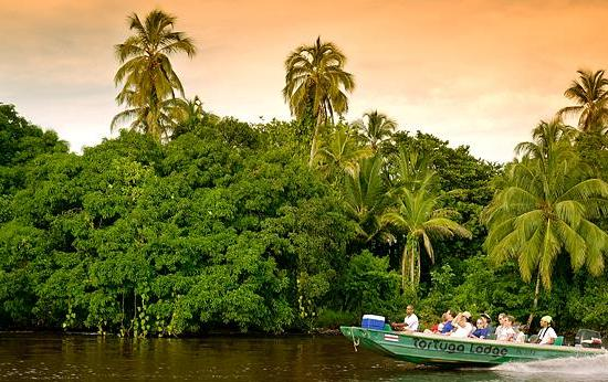 Things to do at Tortuguero National Park