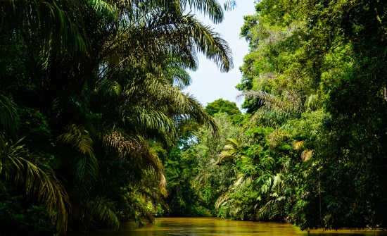 8 BEST COSTA RICA NATIONAL PARKS & RESERVES