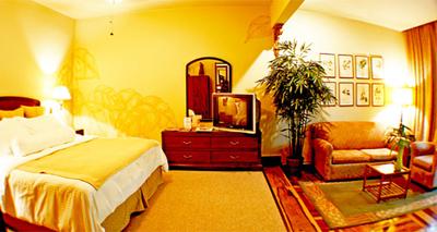 corteza amarilla room