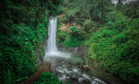 Costa-Rica-Cloud-Forest-Tours
