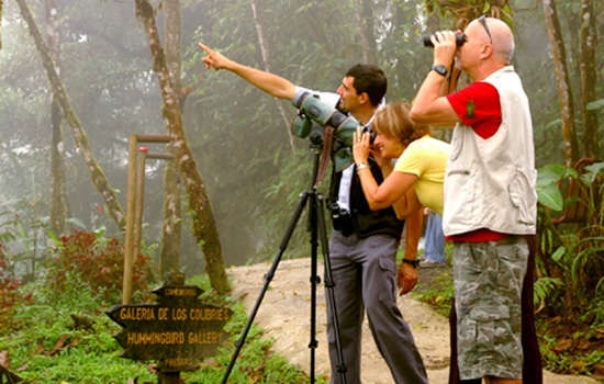Costa Rica Cloud Forest Tours