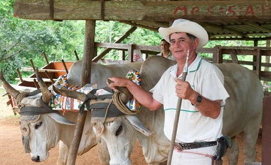 Manuel Antonio Santa Juana Mountain Tour