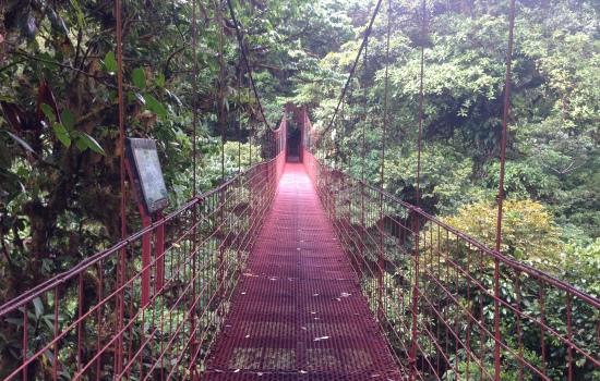 Monteverde Reserve Hike