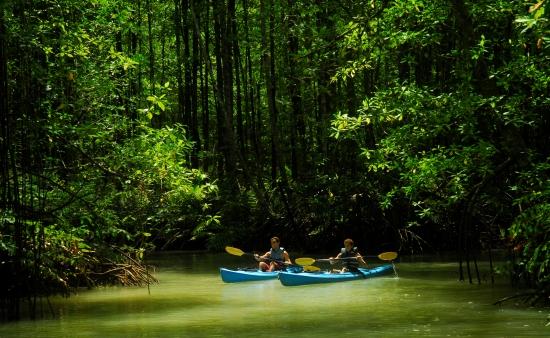 Osa Peninsula Tours kayaking