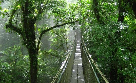 15 Best Guanacaste Tours & Activities