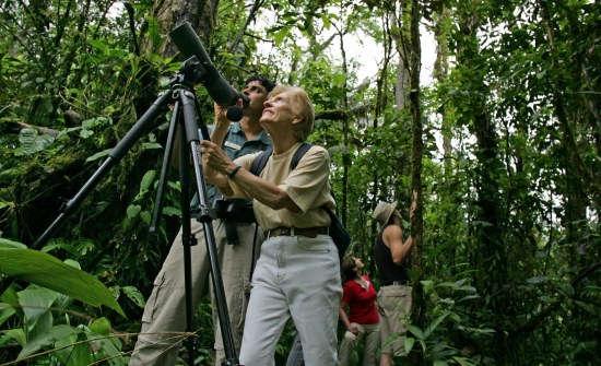 Top-Monteverde-Day-Tours-Activities