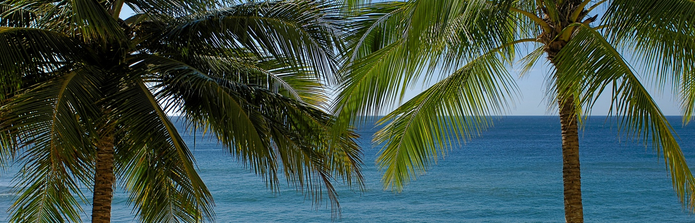 Costa Rica Vacations >> Costa Rica Christmas Traditions | Costa Rica Experts