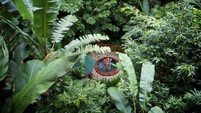6 night Tropical Getaway Costa Rica Vacation