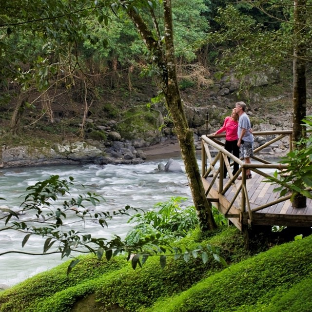 Wild, romantic, serene... At Rios Tropicales Lodge @riostropicales #nature #vacations