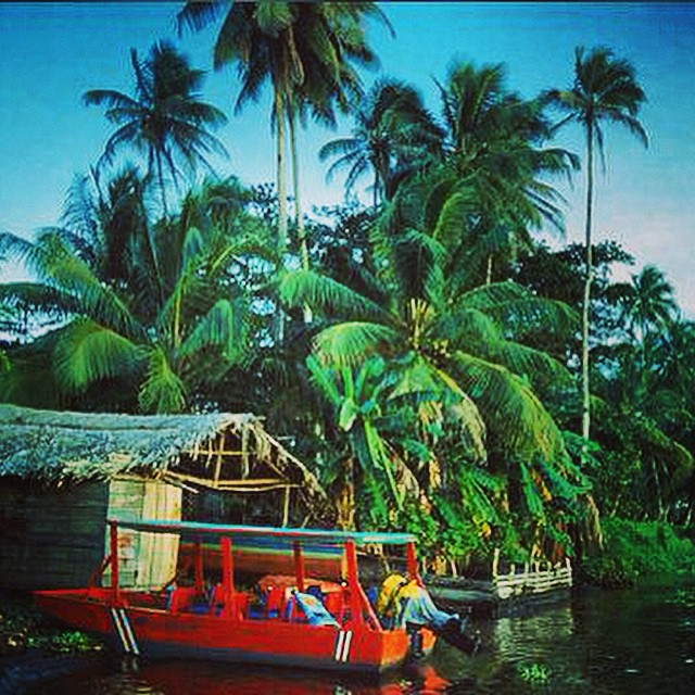 This little red boat & #jungle hut looks just like a #Caribbean postcard! ?? #costarica #vacations