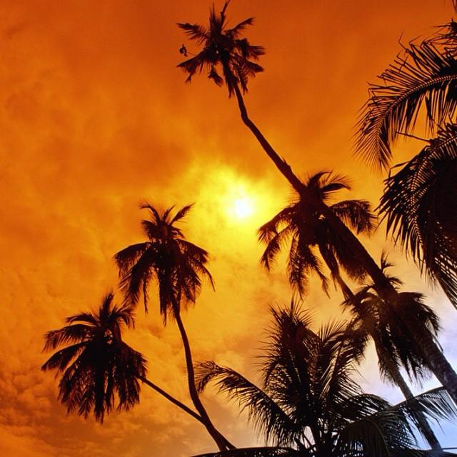 An orange #sunset ablaze.. #costarica #vacations ?
