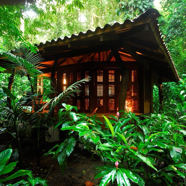 Talk about a #getaway! A private #bungalow in the middle of remote #costarica #rainforest @nicuesalodge ?