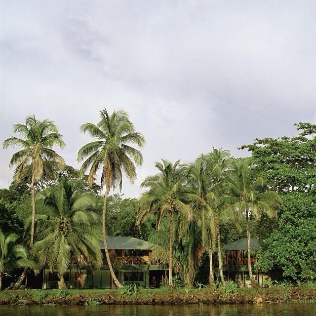 #Adventure into the #jungle canals of #Tortuguero ?? #costarica #vacations