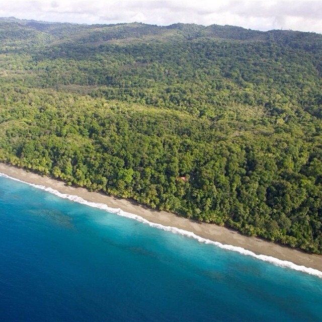 Corcovado National Park has been declared the most biologically intense place on earth for its abundant #nature and #wildlife by @natgeo! #OsaPeninsula #vacations