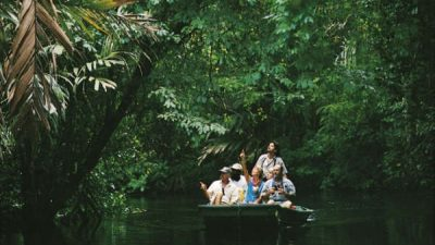 Jungle Fever Vacation Package