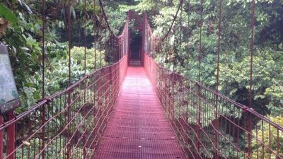 6 Reasons To Add Monteverde To Your Bucket List