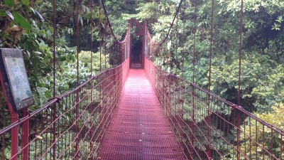 6 Reasons to Visit Monteverde Costa Rica