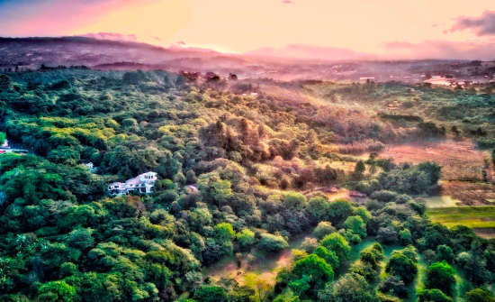 Finca Rosa Blanca Inn & Coffee Plantation