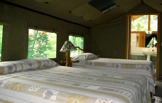 Stay at Rafiki Safari Tent Camp, Costa Rica