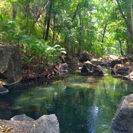 Rio Perdido Hot Springs Hotel Review