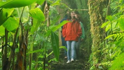 Cloud Forest & Beach Vacation Package