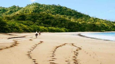 Best Time to Visit Costa Rica: What to Expect Month by Month