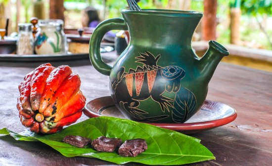 6 Best Costa Rica Coffee Plantation Tours