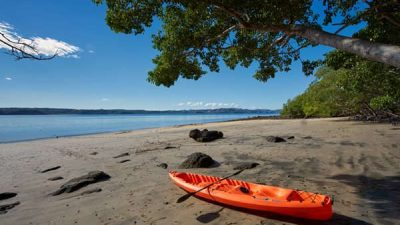 Costa Rica Jungle and Beach Vacation Package