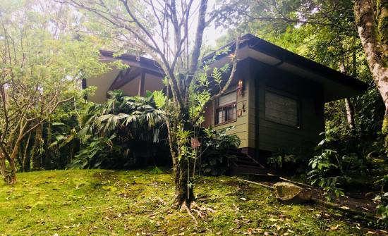 Special Occasion in Costa Rica at El Silencio Lodge