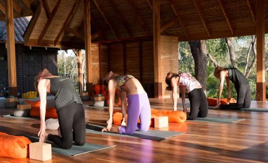 Open-Air Yoga Shala Bodhi Tree