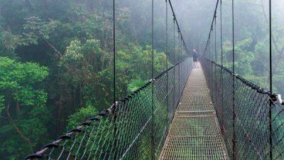 Arenal Hanging Bridges Hike