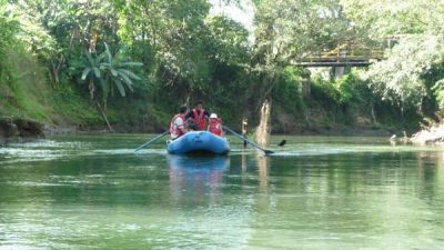 Safari Float Jacamar