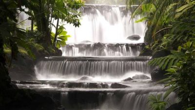 Arenal Volcano and Tabacon Hot Springs Tour