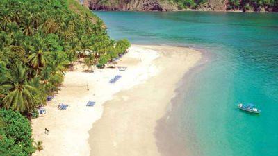 Bay Island Cruise to Tortuga Island