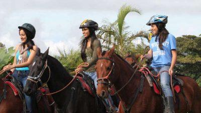 Farmland Horseback Riding Tour