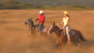 Guanacaste Horeseback Riding