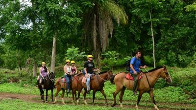 Horseback Riding with Ocean Views & Waterfalls