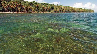 Snorkel and Hike Cahuita National Park
