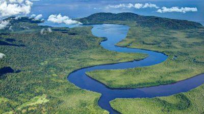 Terraba Sierpe National Wetlands Tour by Boat