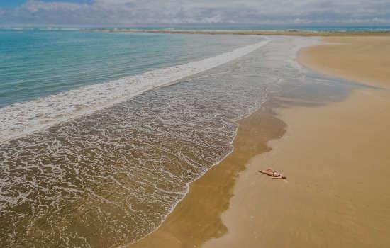 Marino Ballena National Park beach